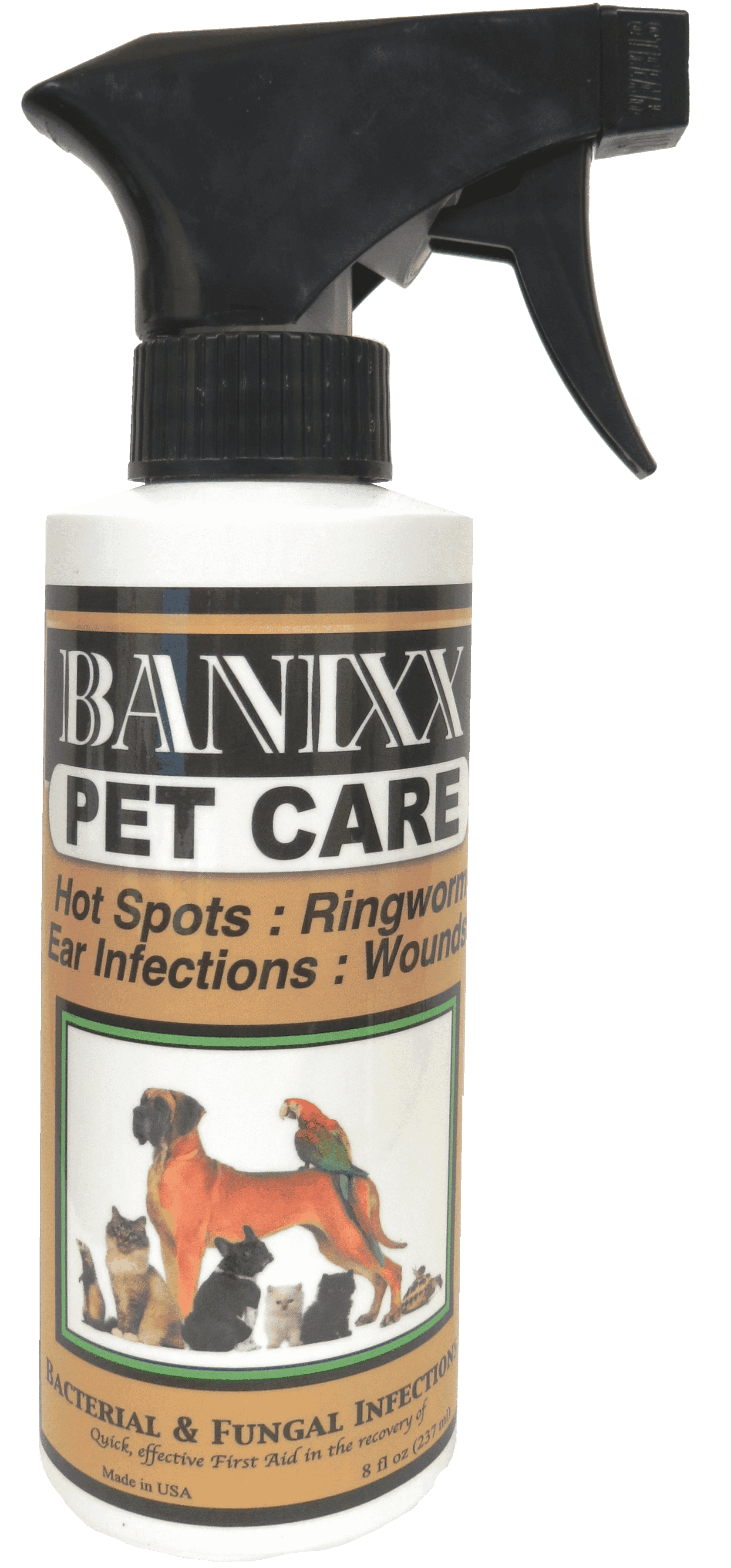 How To Treat Mange In Dogs Vet Approved Dog Mange Treatment