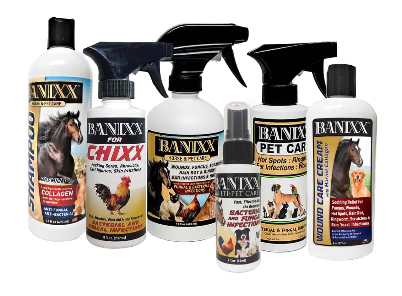 How To Clean Dog Eyes Crust: banixx todocat.com