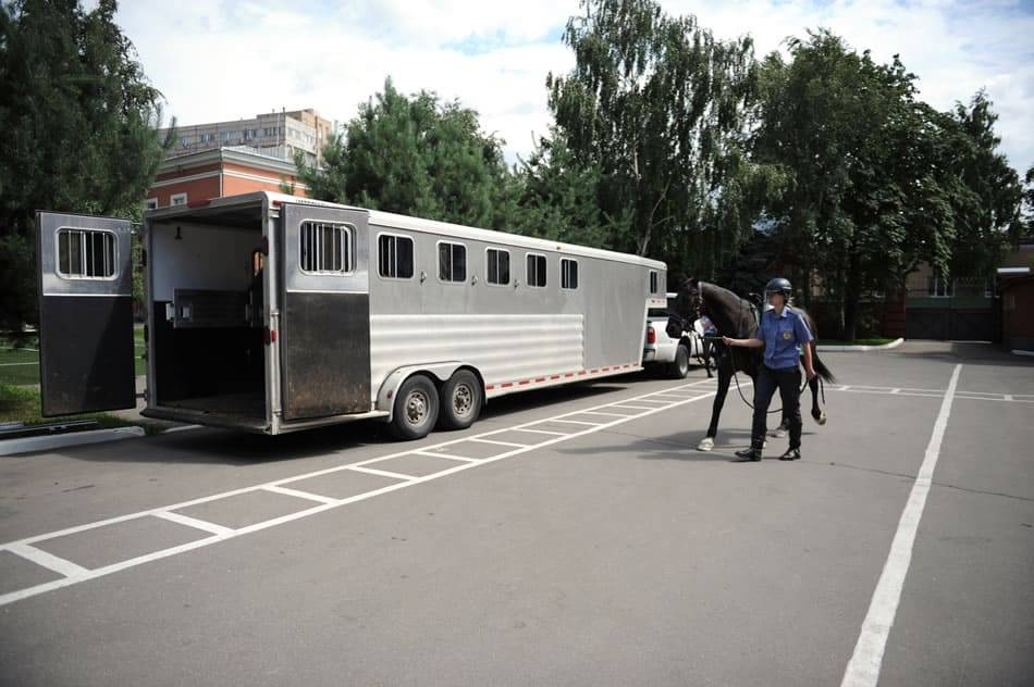 horse trailer walkaround