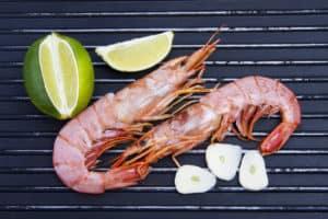 shrimp for dogs