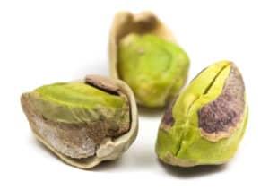 dog eat pistachio