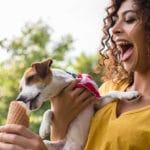 dog licking everything