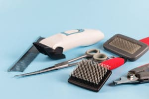 Combs and brushes to groom a dog