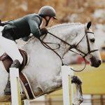 How To Treat Rain Rot On Horses
